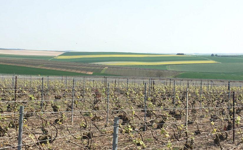 3 étapes recommandées au départ de la Bourgogne -
