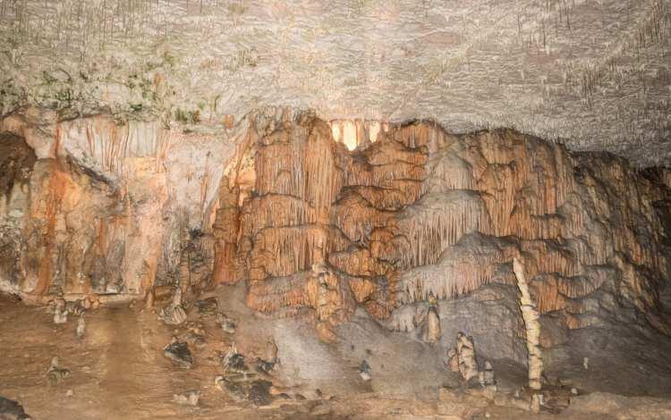 Grotte de Postojna