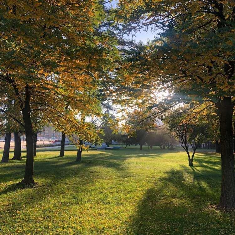 Planty Park à Cracovie