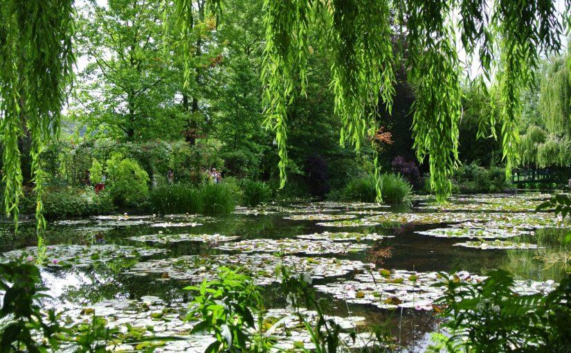un saut dans un tableau de Monet